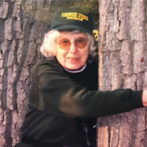 Carolyn H. Chitester