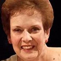 Sally Stein