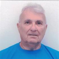 Ronald J. Sholtis