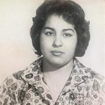 Elva R. Muñoz