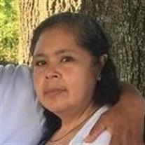 Mrs. Alma  Isabel  Vargas