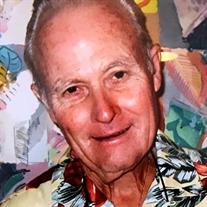 Anthony  George Veystrk Jr.