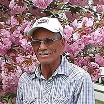 Francisco Alfaro-Estrada