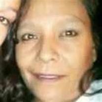 Ronette Gallegos