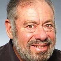 Michael Irving Green