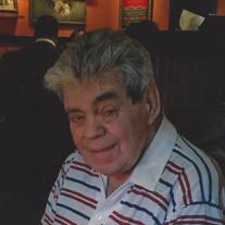 Mr. Domenic W. Gallo