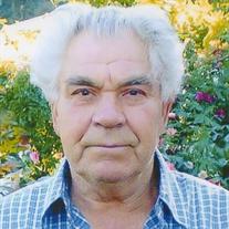 Petr M Nyukeyev