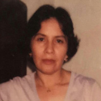 Guadalupe Aranda