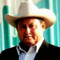 Lino  Cantu  Jr.