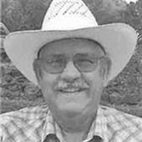 David  W. Callison