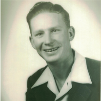 Mr. Morris Lee Skinner