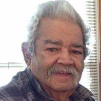 Victor M Matos Ayala