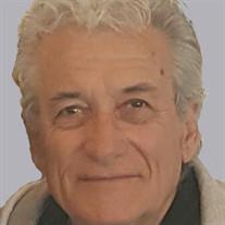 Mr. Dragan Mihajlovic