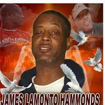 Mr. James L.   Hammonds
