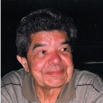 Wayne  George  Bull