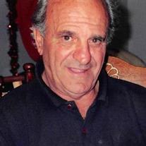Michael J. DiLeo