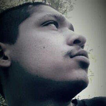 Mr. Raymond Jr Moreno Hernandez