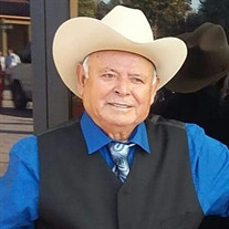 Benito Vega Melo