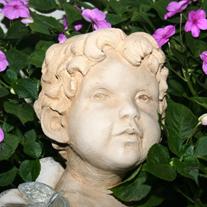 Joelene E Carini