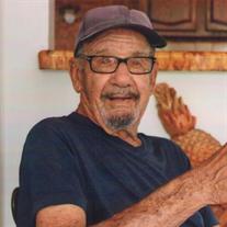 Gino Mario Menegon