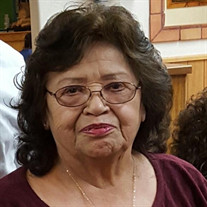 Stella P.  Grijalva