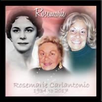 Rosemarie F. Carlantonio
