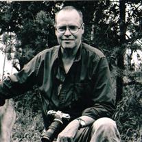 William  David  Ridgely