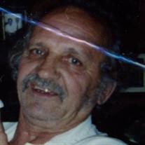 Mr. Werner Adolf Metzger