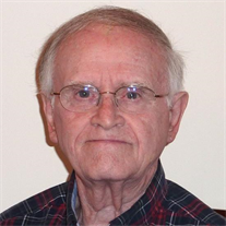 Mr. Lewis Randolph Selvidge Jr.
