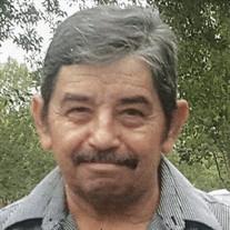 Javier Arce Estala