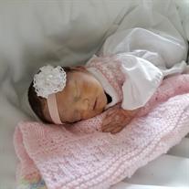 Little Miss Harper Lynn Brown
