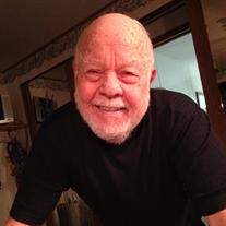 Douglas E Marsh