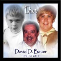 David D. Bauer