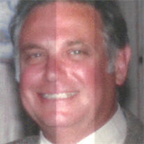Robert Domenici Jr.
