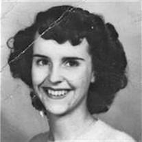 Mary  Ann Endicott-Porter