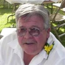 Michael V Williams