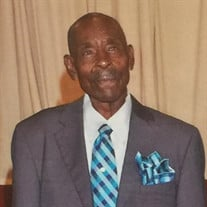 Mr. Joe Alexander Sherman Jr.