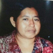 Maria Cristina  Vielma Martinez