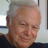 IRWIN J. BLITT