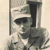 David  E. Lemke Sr.