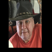Larry  D Radinsky
