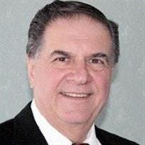 Paul C Belvedere DDS