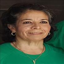 Alicia Arreguin