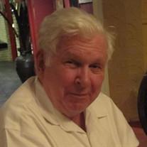Mr. Ray Hopkins Bowler