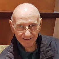 Joseph Ernest Segarini Jr.