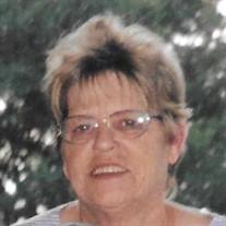 Judy Lane Schmitt