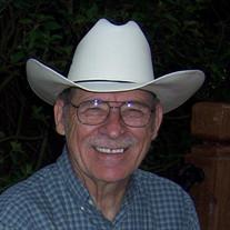 Mr. Alvin  Weigel
