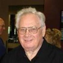 Robert J. Domino