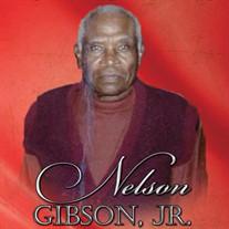 Mr. Nelson Gibson Jr.