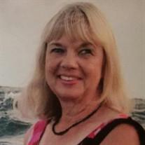 Carol J. Schafer